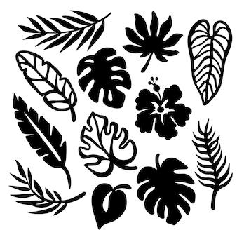 Tropikowe liście monochromatyczne kolekcja liści roślin egzotycznych rzeźbione ażurowe kontury do druku i cięcia ploterem clipart wektor ilustracja zestaw
