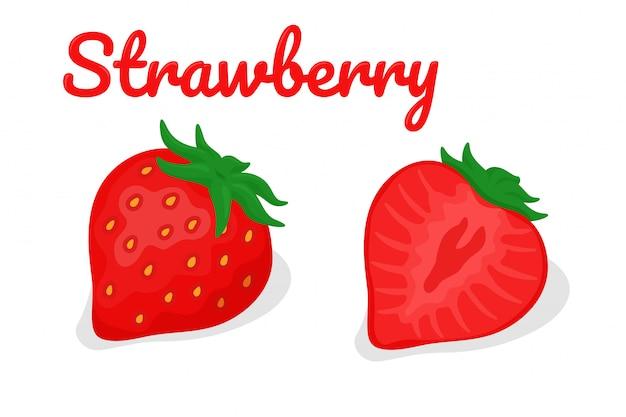 Truskawkowy wektor. czerwona truskawka owoc odizolowywająca