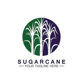 Trzcina cukrowa logo ikona symbol wektor ilustracja szablon projektu
