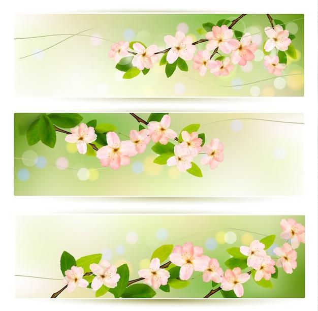 Trzy banery wiosna z brunch kwitnących drzew z wiosennych kwiatów