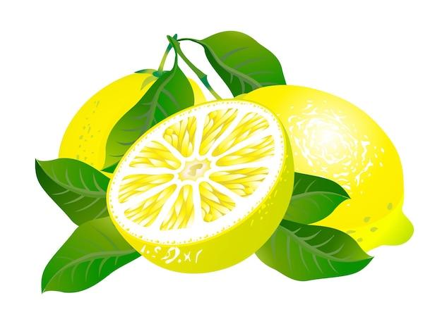 Trzy cytryny z liśćmi na białym tle