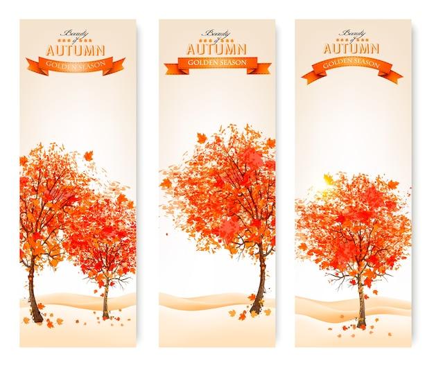 Trzy jesienne streszczenie banery z kolorowymi liśćmi i drzewami. ilustracja.