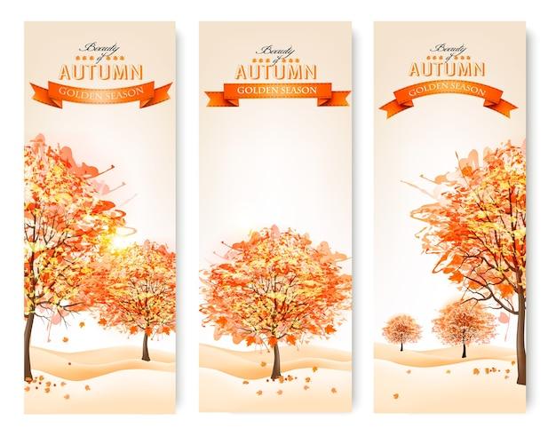 Trzy jesienne streszczenie banery z kolorowymi liśćmi i drzewami.