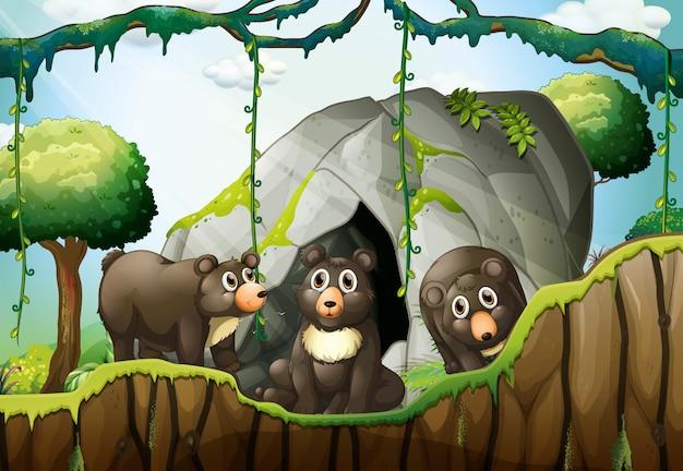 Trzy małe niedźwiedzie przy jaskini