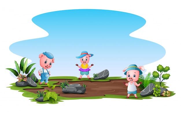 Trzy małe świnki bawiące się na polu