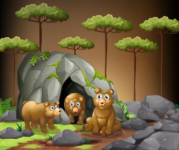 Trzy niedźwiedzie żyjące w jaskini