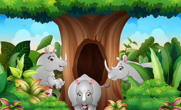 Trzy nosorożce pod wielkim drzewem