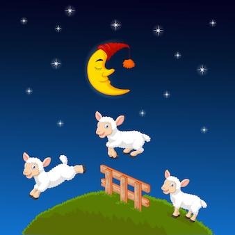 Trzy owce skaczące przez płot