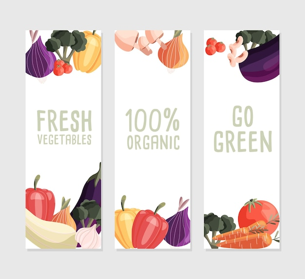 Trzy pionowe szablony banerów ze świeżymi organicznymi warzywami i miejscem na tekst
