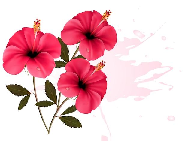 Trzy różowe kwiaty w tle.