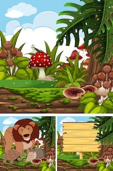 Trzy sceny z dzikimi zwierzętami w lesie