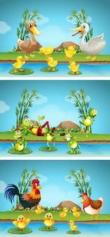 Trzy sceny zwierząt gospodarskich nad rzeką