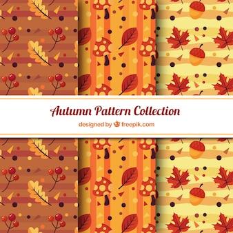 Trzy wzory liści jesienią