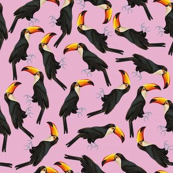 Tukan różowy tapeta wzór