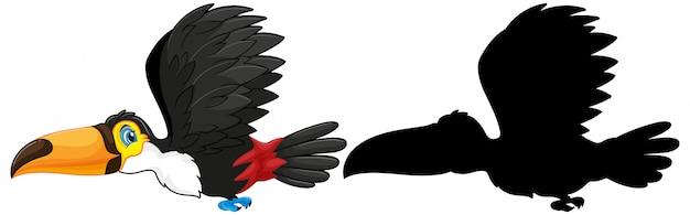 Tukan z sylwetką