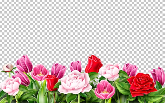 Tulipan róża piwonia kwiat na przezroczystym