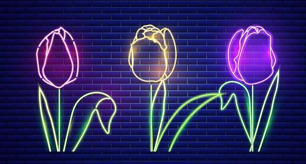 Tulipanowe kwiaty neonowe światło