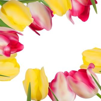 Tworzące kwiaty tulipanów z miejsca na kopię.