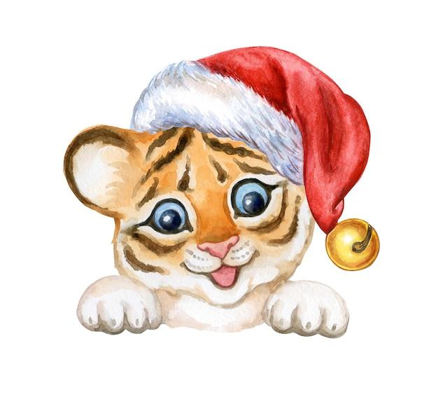 Tygrys dziecko z podniesionymi łapami w santa hat tygrys cub akwarela na białym tle