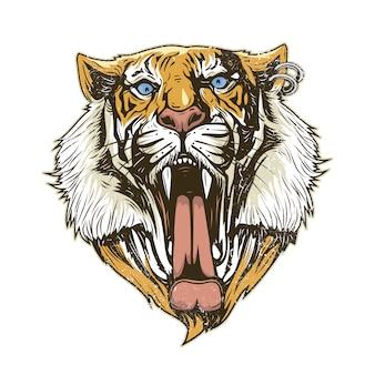 Tygrys głowy tle