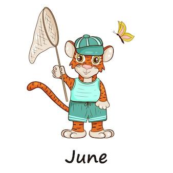 Tygrys jest symbolem chińskiego nowego roku, z napisem june. w czapce i letnim garniturze, z latającymi motylami. idealny do tworzenia kalendarza. styl kreskówki wektor