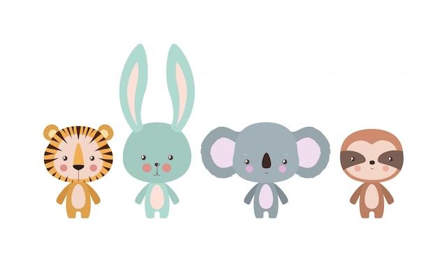Tygrys królik koala i lenistwo kreskówka