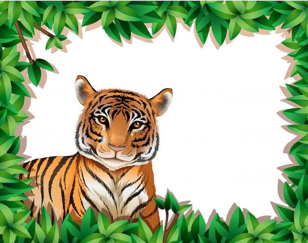 Tygrys w ramce natury