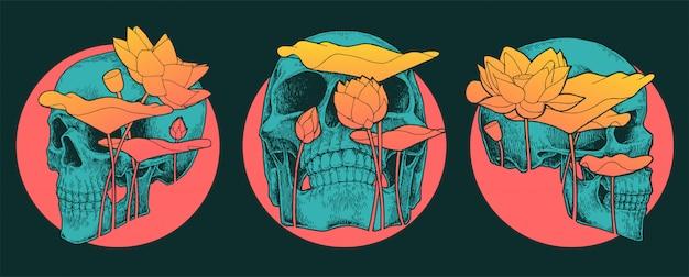 Unikalny zestaw stylizacji czaszki i lotosu