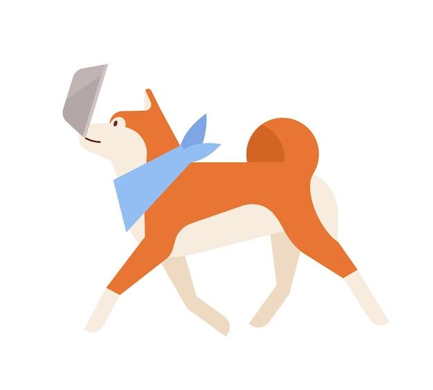 Urocza akita inu niosąca swój karmnik. ładny rasowy japoński pies towarzyszący na białym tle. codzienna aktywność zwierzęcia domowego lub domowego. ilustracja wektorowa kolorowe w stylu cartoon płaskie.