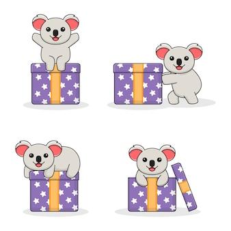 Urocza koala z szkatułce
