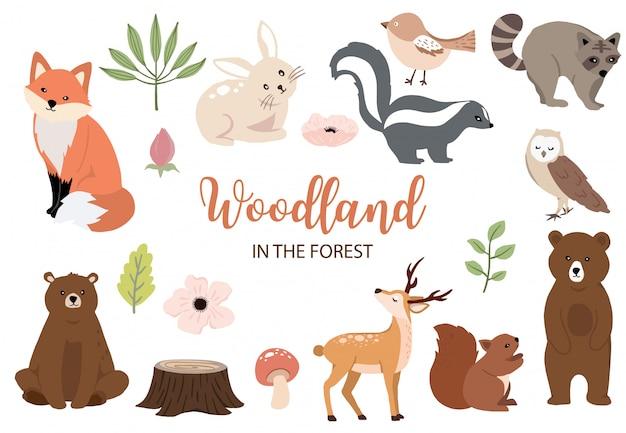 Urocza kolekcja elementów leśnych z niedźwiedziem, królikiem, lisem, skunksem, grzybami i liśćmi