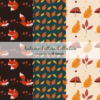 Urocza kolekcja jesienna