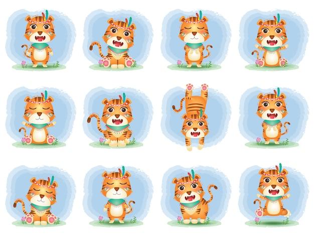 Urocza kolekcja tygrysów z kostiumem apacza
