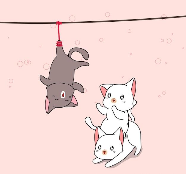Urocze 2 białe koty bawią się z czarnym kotem, który został powieszony