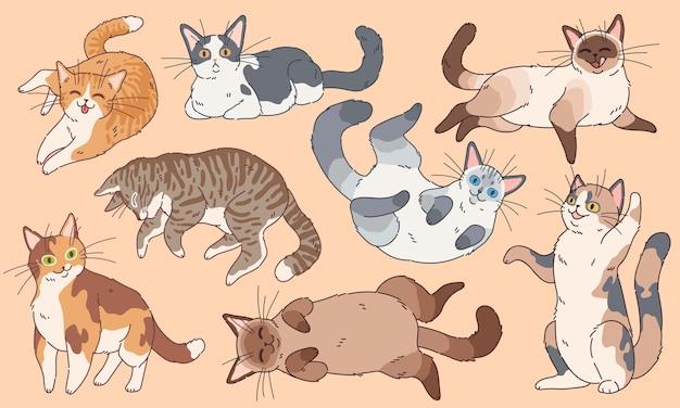 Urocze koty. śmieszne kocięta różne rasy, zwierzęta domowe śpiące i grające w kreskówkę happy kitty face rysowanie logo znaków zestaw
