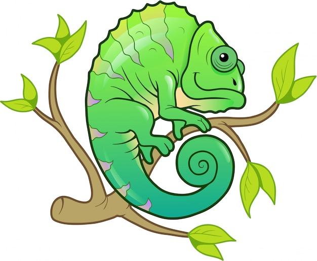 Uroczy kameleon