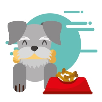 Uroczy pies z kością w ustach miska jedzenie