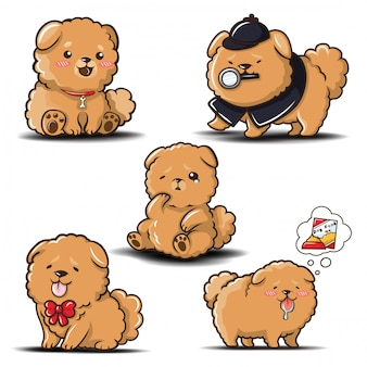 Ustaw cute cartoon chowchow dog.