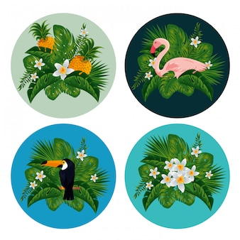 Ustaw etykiety z egzotycznymi zwierzętami i owocami