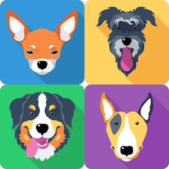 Ustaw ikonę psa płaska konstrukcja bull terrier i chihuahua
