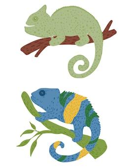 Ustaw kameleony na białym tle. ręcznie rysowane ilustracja doodle.