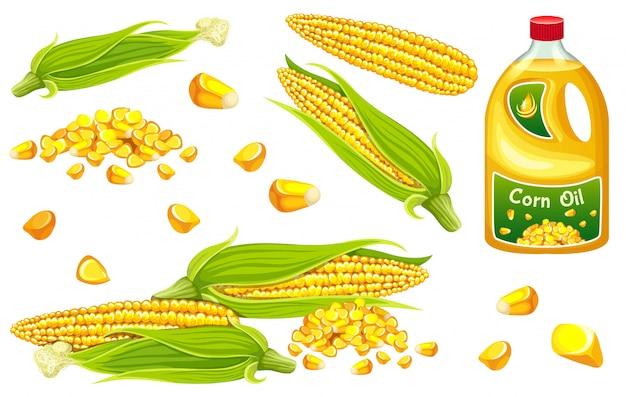 Ustaw kukurydzę, ziarno i liść.