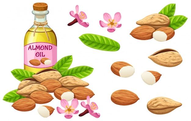 Ustaw olej migdałowy, nasiona i liść.