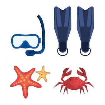 Ustaw sprzęt do pływania z maskami do fajki i rozgwiazdy z krabem