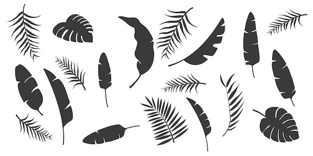 Ustaw sylwetki liści. kolekcja tropikalnych liści monochromatyczne na białym tle na białym tle. palma, palma wachlarzowa, monstera, banan. ilustracja w czarno-białych kolorach.