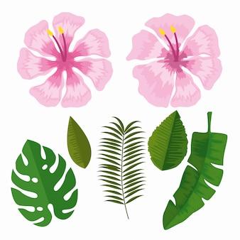 Ustaw tropikalne kwiaty z liśćmi gałęzi
