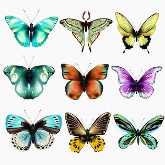Ustaw wielobarwne motyle. ilustracja