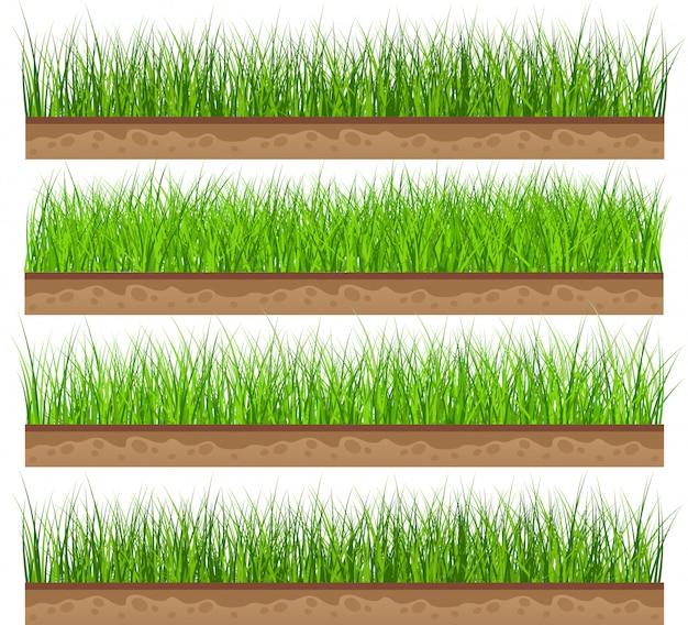 Ustaw zieloną trawę z ilustracji wektorowych na białym tle