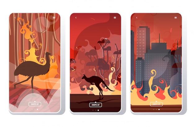 Ustawić pożary lasów w australii pożar pożary krzewy płonące drzewa katastrofa naturalna koncepcja ewakuacji intensywne pomarańczowe płomienie ekrany telefonu kolekcja aplikacja mobilna