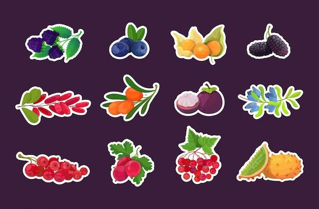 Ustawić świeże soczyste jagody smaczne dojrzałe owoce ikony kolekcja zdrowe jedzenie koncepcja poziome